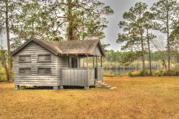 Photograph - Old Cabin In Georgia by Donald Williams