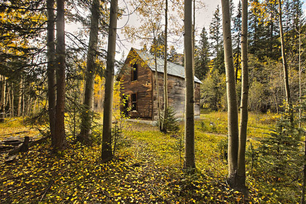 Moose Art Photograph - Old Cabin In Iron Town Colorado by James Steele