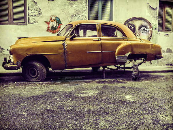 Old Car Wall Art - Photograph - Old Car/cat by Svetlin Yosifov