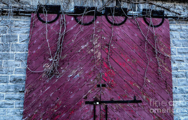 Remise Photograph - Old Carriage House Door by Julie Chambers