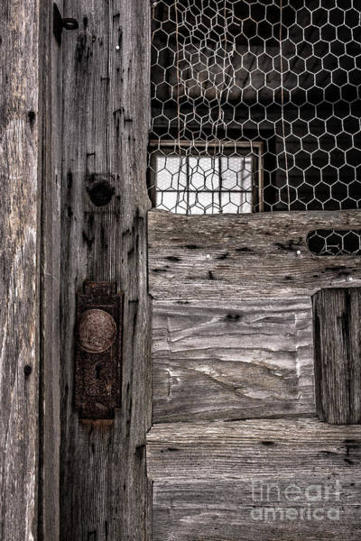 Photograph - Old Chicken Coop by Edward Fielding
