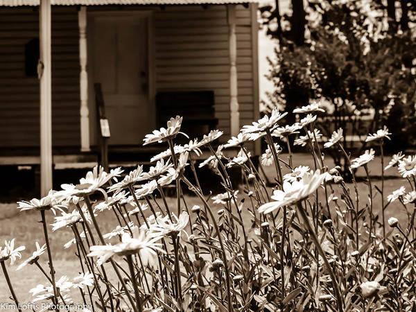 Pioneer School Photograph - Old Church by Kim Loftis