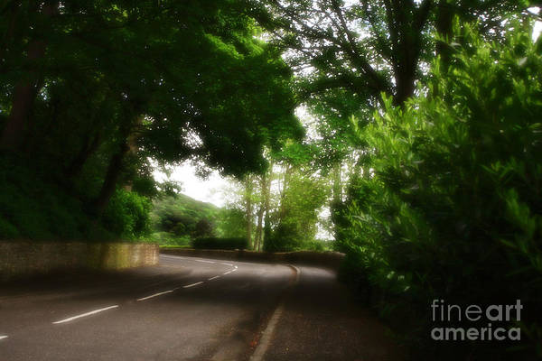 Photograph - Old Country Road by Doc Braham