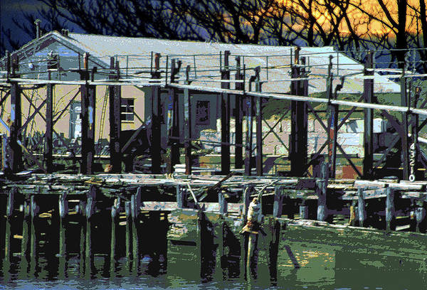 Photograph - Old Dock by Bob Slitzan