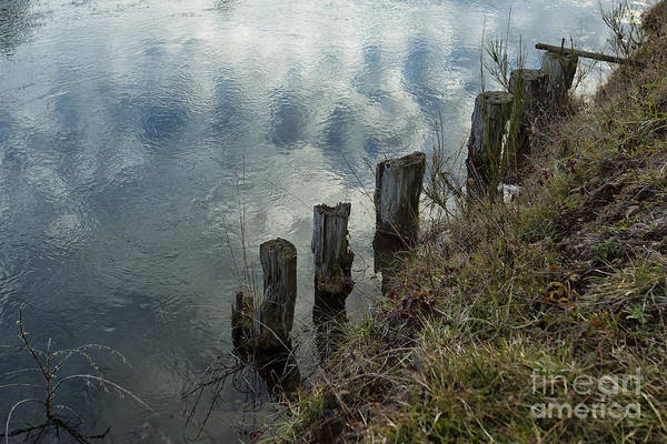 Photograph - Old Dock Supports Along The Canal Bank - No 1 by Belinda Greb