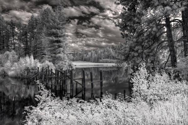 Photograph - Old Dufort Road Bridge Pilings 2 by Lee Santa