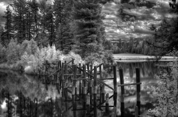 Photograph - Old Dufort Road Bridge Pilings 3 by Lee Santa