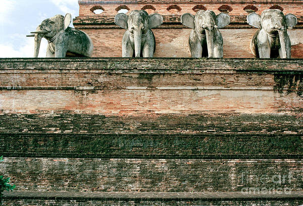 Wall Art - Photograph - Old Elephant Temple by Dean Harte