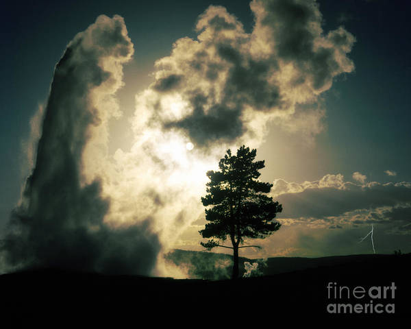 Photograph - Old Faithful by Edmund Nagele