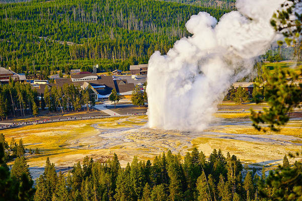 Photograph - Old Faithful From Observation Point by Greg Norrell