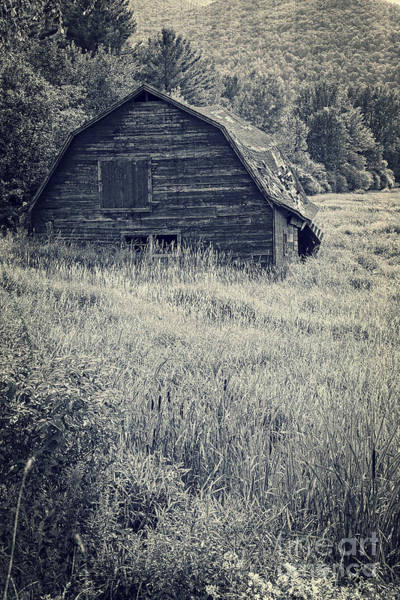 Photograph - Old Falling Down Barn Blue by Edward Fielding