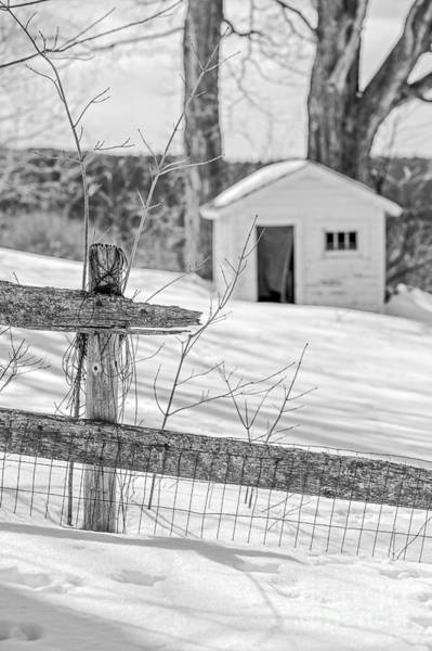 Photograph - Long Cold Winter by Edward Fielding