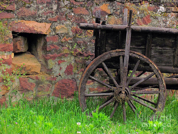 Photograph - Old Farm Wagon by Alexa Szlavics