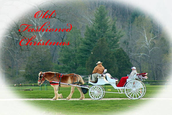 Photograph - Old Fashioned Christmas by Lorna R Mills DBA  Lorna Rogers Photography