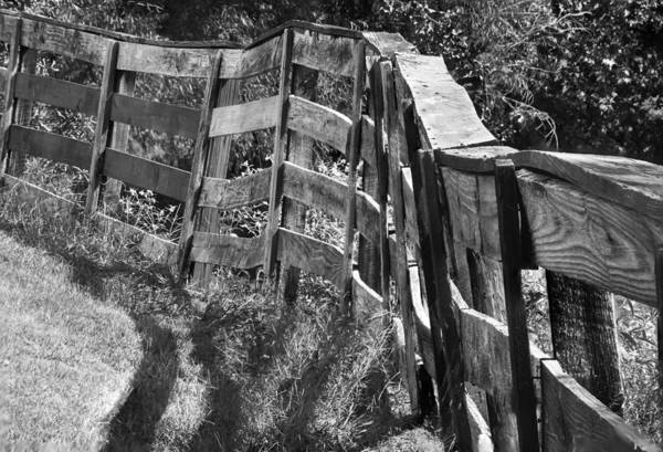 Photograph - Old Fence by Philip Rispin