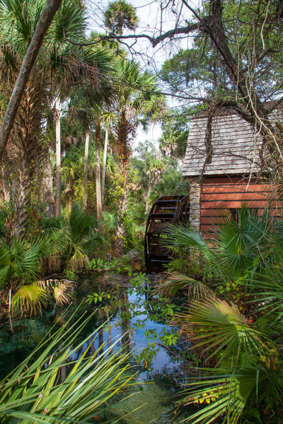 Wall Art - Photograph - Old Florida Watermill I by W Chris Fooshee