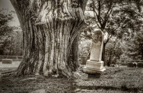Graveyard Wall Art - Photograph - Old Friends by Scott Norris