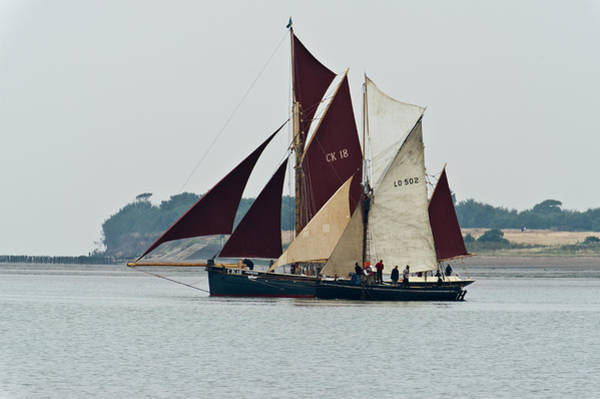 Photograph - Old Gaffers Off Brightlingsea by Gary Eason