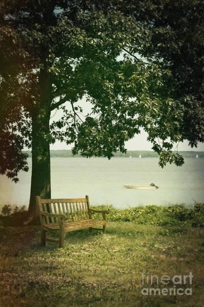 Photograph - Old Garden Bench Under Big Maple Tree by Sandra Cunningham