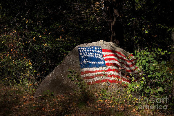 Lowry Photograph - Old Glory Rocks by T Lowry Wilson