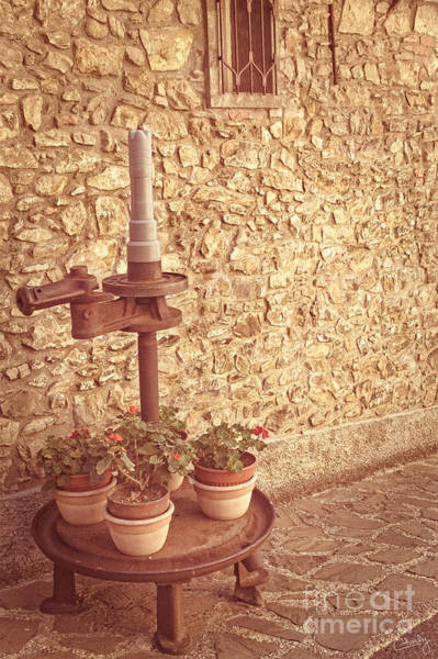 Photograph - Old Grape Press by Prints of Italy