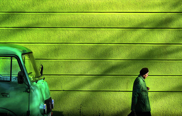 Wall Art - Photograph - Old Green by Zlatko Vickovic