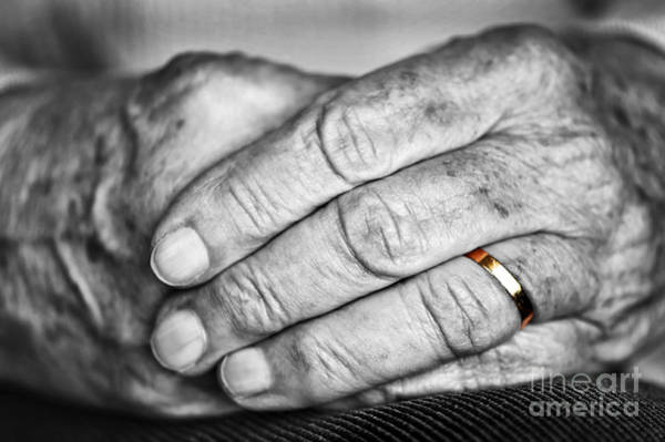 Elderly Wall Art - Photograph - Old Hands With Wedding Band by Elena Elisseeva