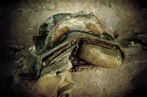 Photograph - Old Harness Saddle For Mules And Horses by RicardMN Photography