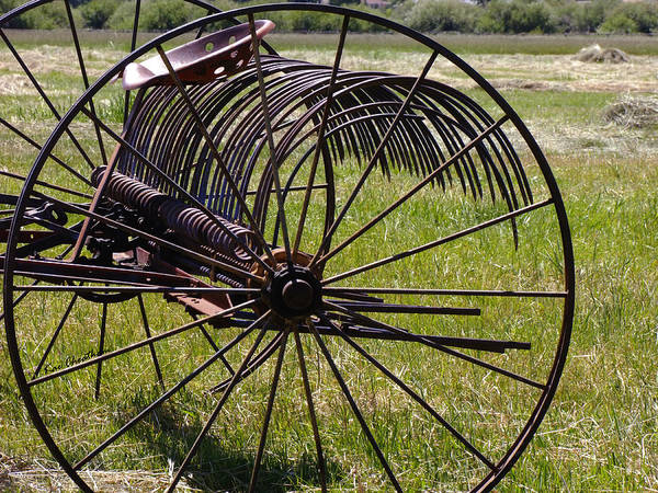 Hay Rake Photograph - Old Hay Rake by Kae Cheatham