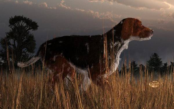 Old Hunting Dog Art Print