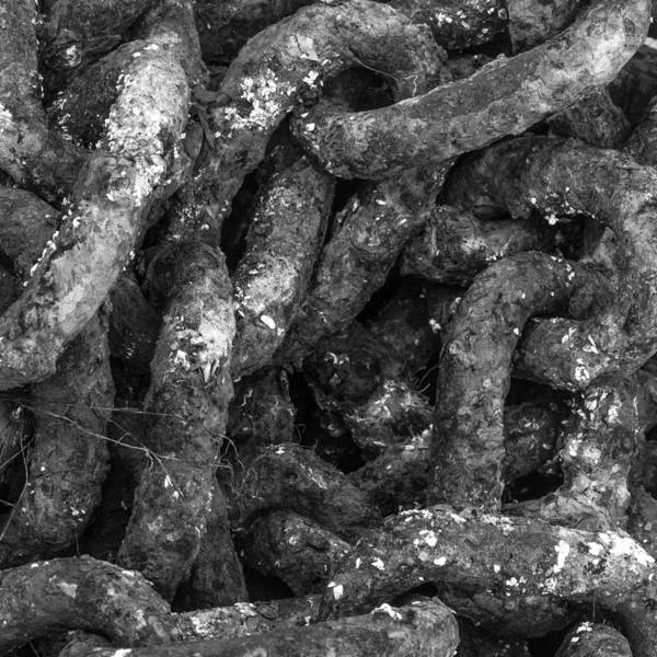 Photograph - Old Iron Chains by Kyle Lee