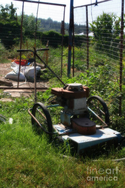 Photograph - Vintage Lawn Mower by Doc Braham