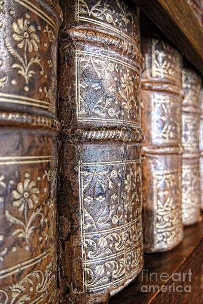 Book Shelf Photograph - Old Knowledge by Olivier Le Queinec