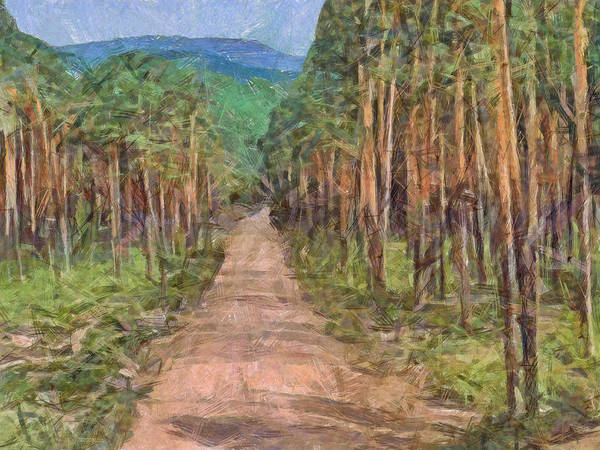 Digital Art - Old Logging Road by Digital Photographic Arts