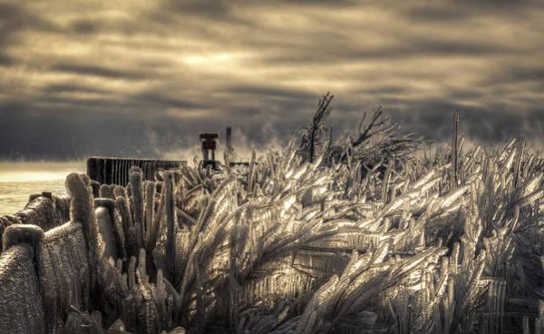 Wall Art - Photograph - Old Man Winter by Anna-Lee Cappaert