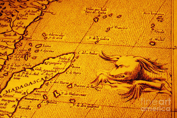 Cartography Photograph - Old Map Of Africa Madagascar With Sea Monster by Colin and Linda McKie