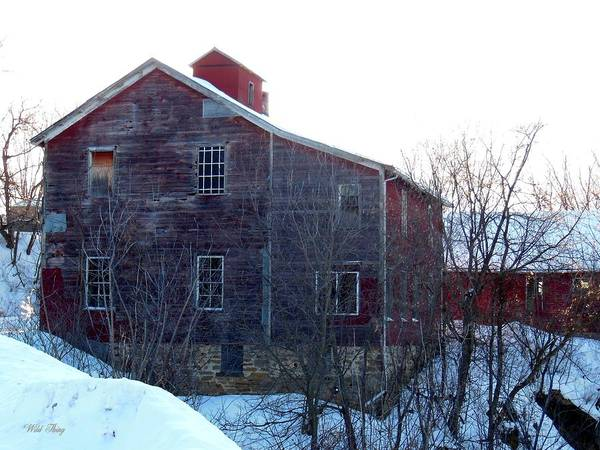 Photograph - Old Mill by Wild Thing