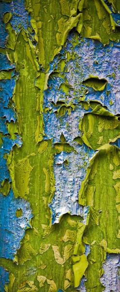 Disintegration Wall Art - Photograph - Old Paint by Frank Tschakert