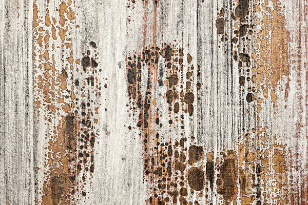 Neglected Wall Art - Photograph - Old Painted Wood Abstract No.2 by Elena Elisseeva