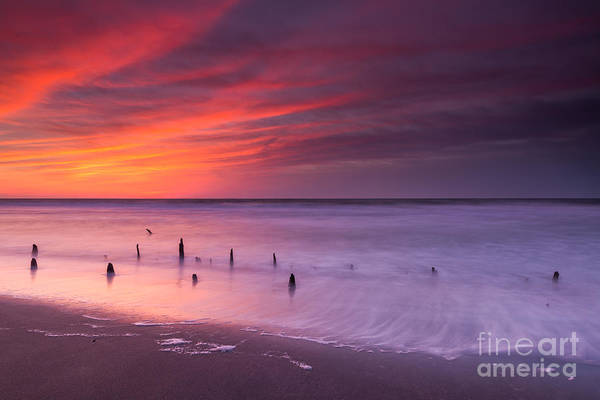 Reverse Wall Art - Photograph - Old Pilings Sunrise  by Michael Ver Sprill