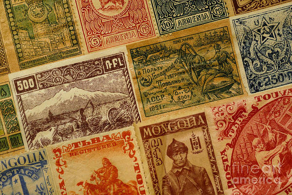 Stamp Collecting Photograph - Old Postage Stamps From Around The World by Amy Cicconi