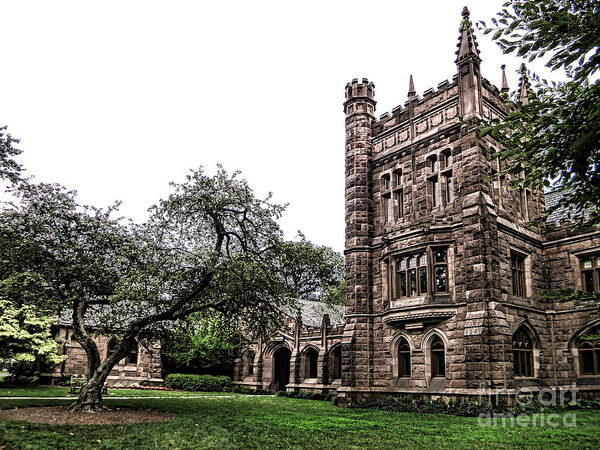 Photograph - Old Princeton by Olivier Le Queinec