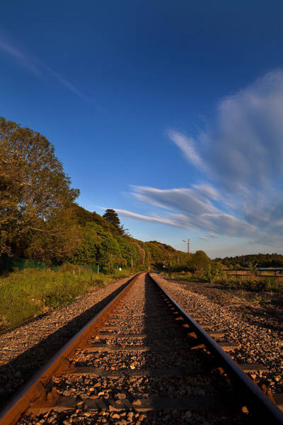 County Waterford Photograph - Old Railway Tracks, County Waterford by Panoramic Images