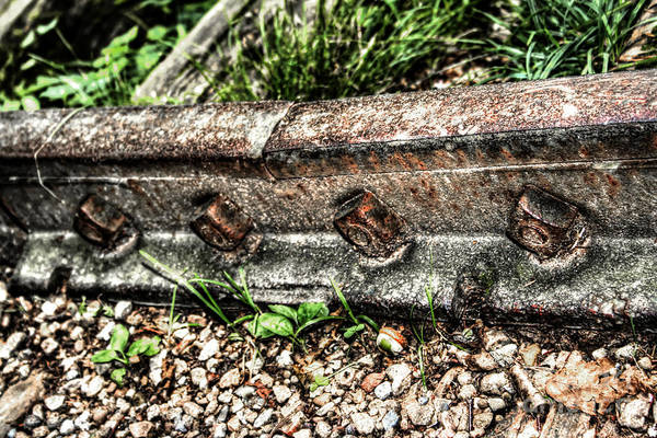 Photograph - Old Railway Tracks by Doc Braham