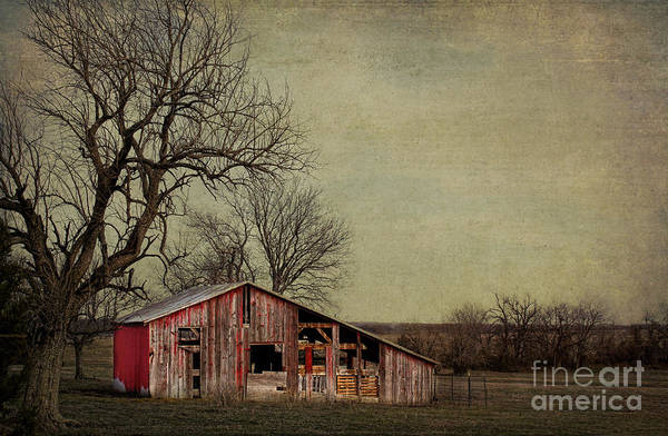 Photograph - Old Red Barn by Elena Nosyreva