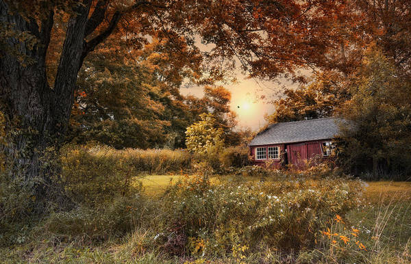 Red Robin Photograph - Old Red Shed by Robin-Lee Vieira