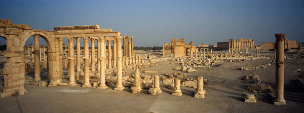 Colonnade Photograph - Old Ruins Of A Temple, Temple Of Bel by Panoramic Images