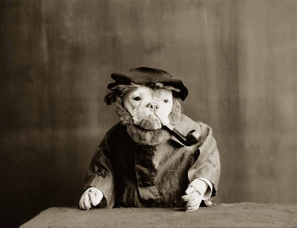 Dogs Photograph - Old Sailor Circa 1905 by Aged Pixel