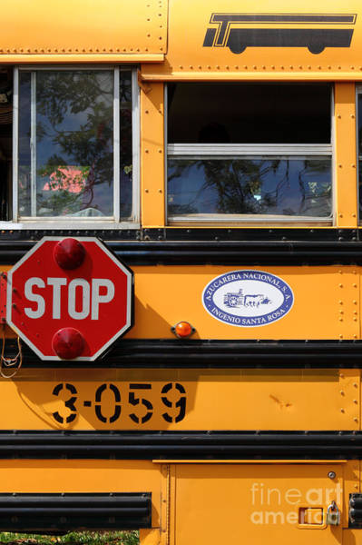 Photograph - Old School Bus 1 by James Brunker