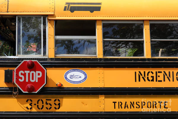Photograph - Old School Bus 2 by James Brunker